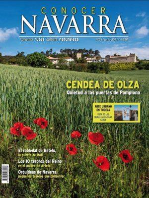 Conocer Navarra